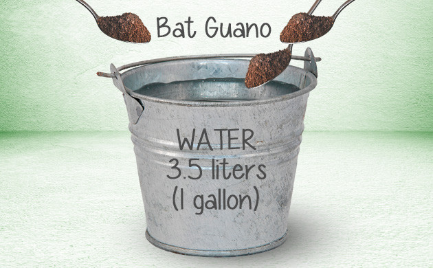 bat guano for weed