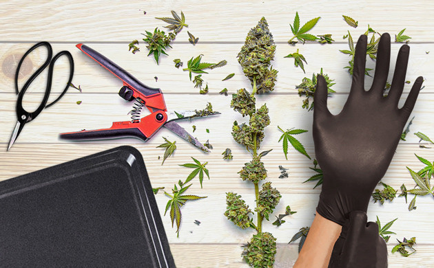 how to trim weed fast