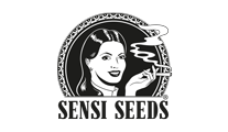 Buy cannabis strains by Sensi Seeds