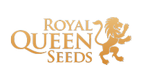 Buy cannabis strains by Royal Queen Seeds