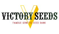 Buy cannabis strains by Victory Seeds