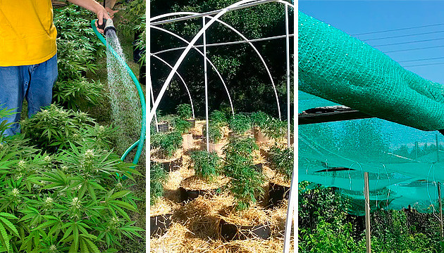 how to protect your outdoor grow from hard rains