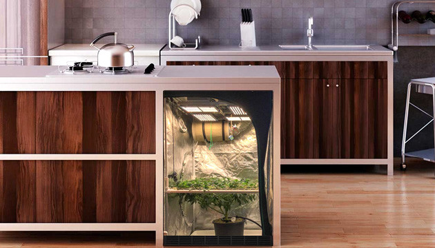 box to hide grow tent in