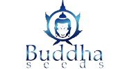 Buy cannabis strains by Buddha Seeds