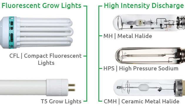 best growing lights