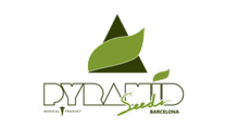 Buy cannabis strains by Pyramid Seeds