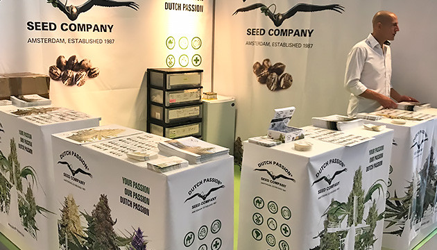 Dutch Passion buy cannabis seeds