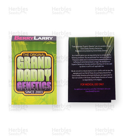 Berry Larry regular (Grand Daddy Purp)