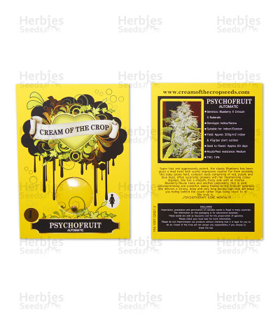 Psychofruit Auto (Cream of the Crop Seeds) Cannabis-Samen