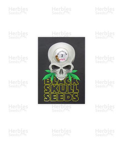 Pineapple Gum (Blackskull Seeds)