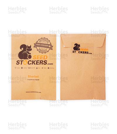 Buy Sherbet Autoflower (Seed Stockers)