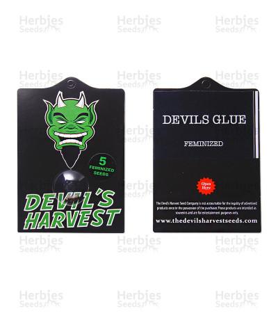 Devils Glue