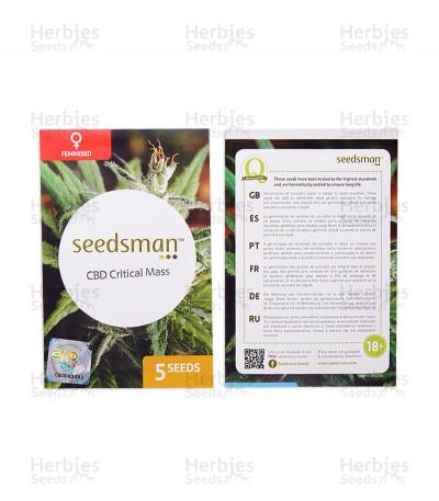 CBD Critical Mass feminized seeds (Seedsman)