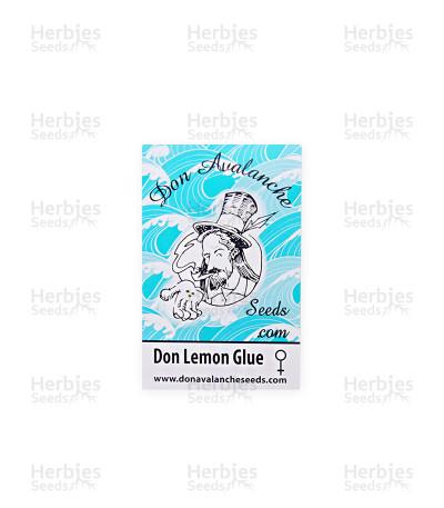 Don Lemon Glue feminized seeds
