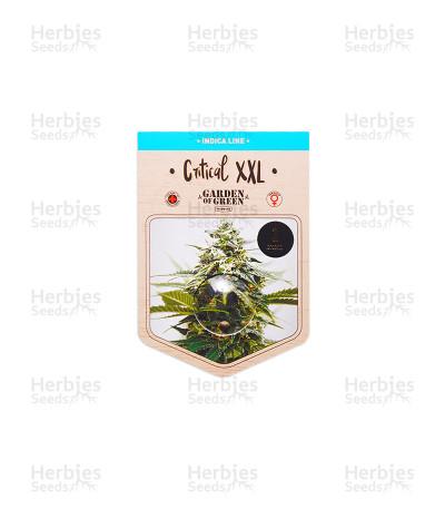 Critical XXL (Garden Of Green Seeds)