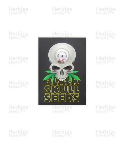 Girl Scout Cookies (Blackskull Seeds)