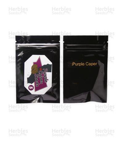 Purple Caper regular