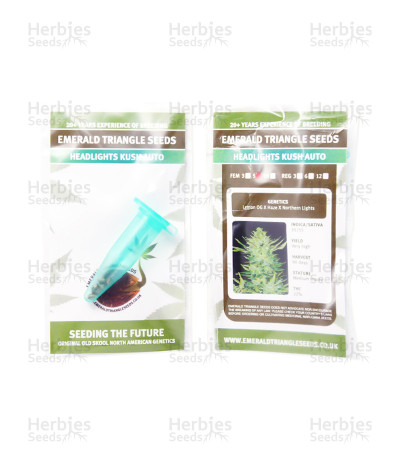 Headlights Kush Auto seeds