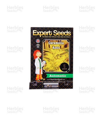 Caramella Auto (Expert Seeds)