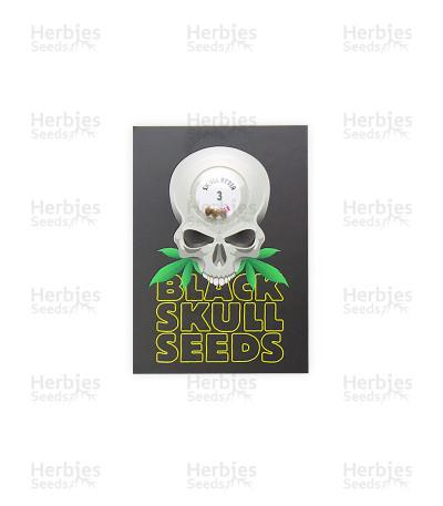 SkullRyder Auto (Blackskull Seeds)
