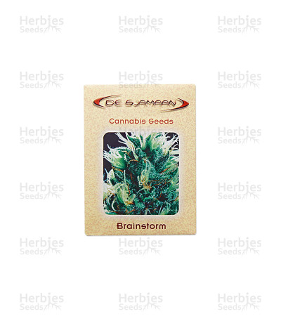 Brainstorm regular seeds