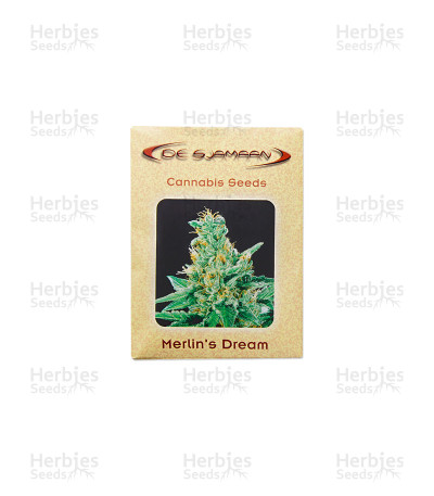 Merlin's Dream regular seeds