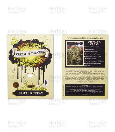 Custard Cream (Cream of the Crop Seeds)