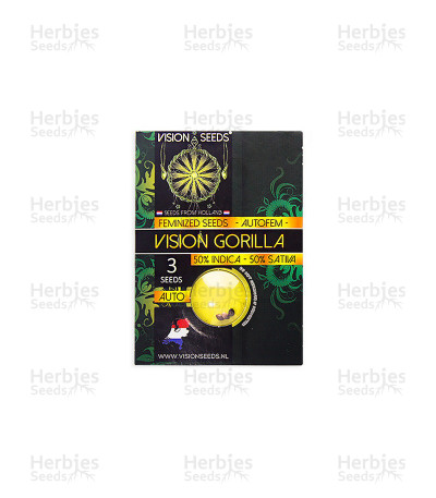 Buy Vision Gorilla Auto feminized seeds