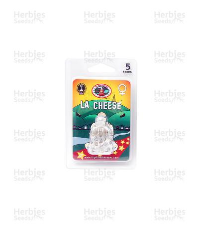 La Cheese (Big Buddha Seeds)