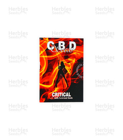 Critical (CBD Seeds)