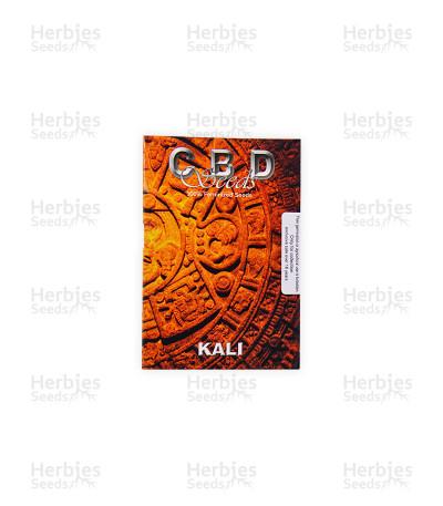 Kali (CBD Seeds)