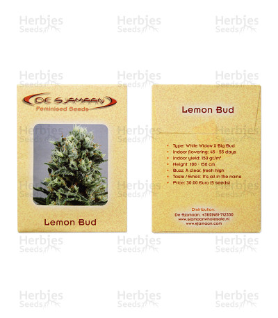 Lemon Bud feminized seeds