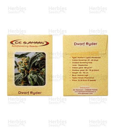Dwarf Ryder Auto feminized seeds