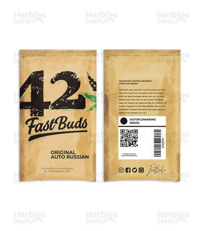 Buy Original Auto Russian by FastBuds