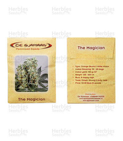 The Magician feminized seeds