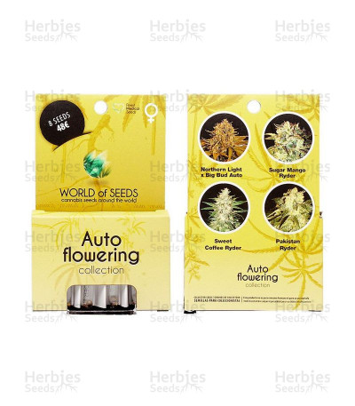 Buy Autoflowering Collection feminized seeds