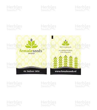 Buy Indoor Mix fem (Female Seeds)