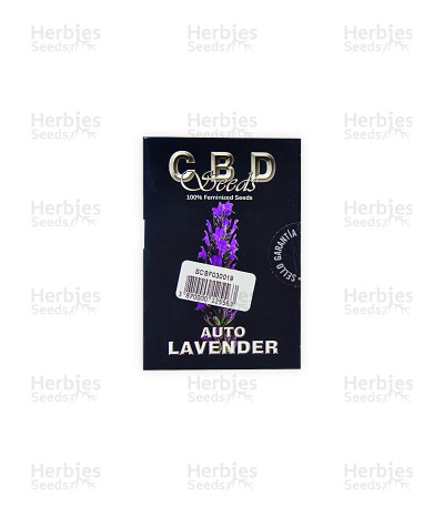 Auto Lavender (CBD Seeds)