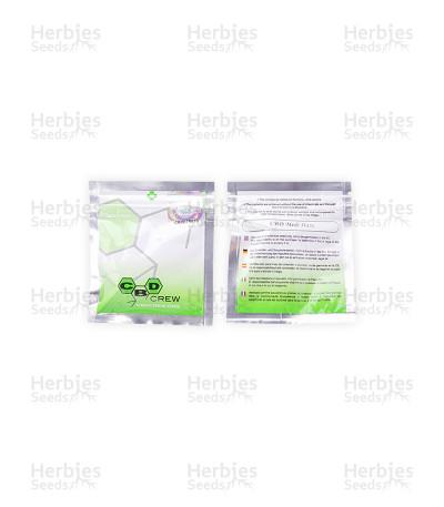 CBD Medi Haze (CBD Crew) Cannabis-Samen