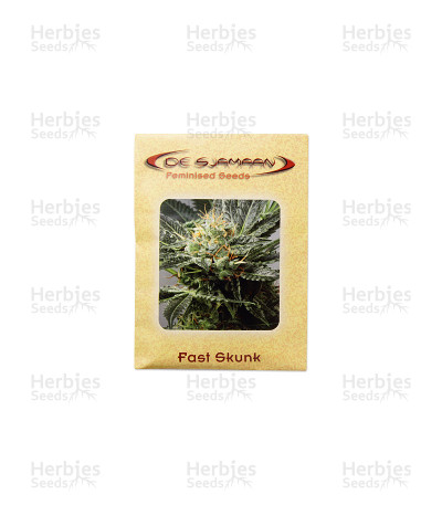 Fast Skunk feminized seeds
