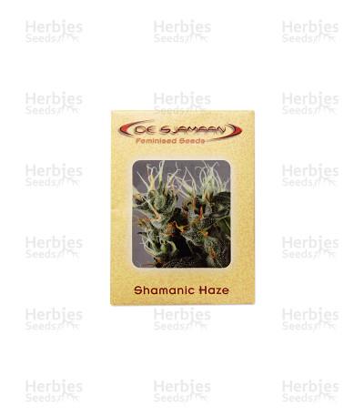 Shamanic Haze seeds