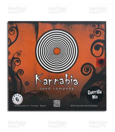 Buy Guerrilla Mix feminized seeds