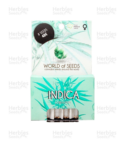 Buy Indica Pure Origin Collection feminized seeds