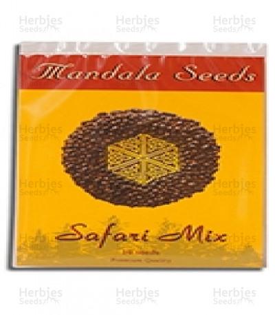 Buy Safari Mix regular seeds
