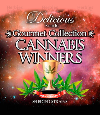 Buy Gourmet Collection - Cannabis Winner Strains #2 feminized seeds